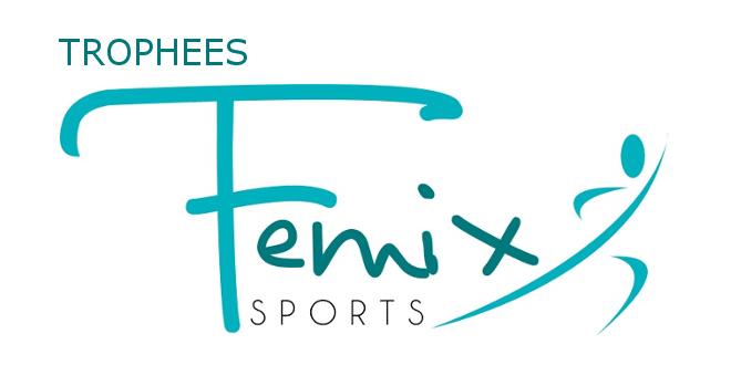 Trophées FEMIX'SPORTS 2016 Nouvelle-Aquitaine – inscription avant le 10 octobre !