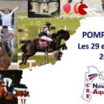 Equitation – 250 cavaliers de Nouvelle-Aquitaine réunis à Pompadour