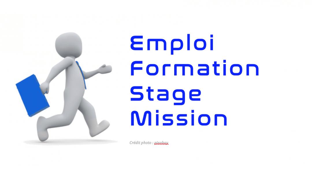 Offre d'emploi : éducateur sportif Voile – agent de développement