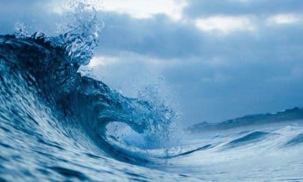 La Ligue de surf Nouvelle-Aquitaine inquiète pour les clubs